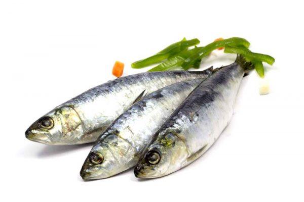 sardinhas com pimentos