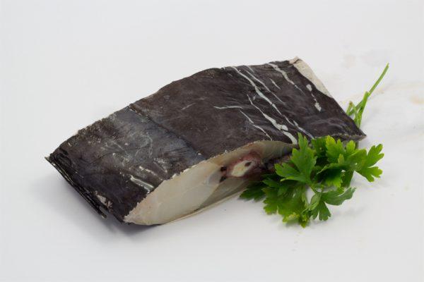 Peixe_Espada_preto